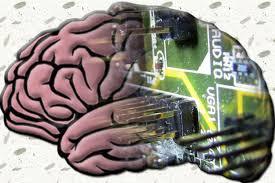 الگوریتمی با قابلیت شبیهسازی مغز انسان